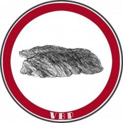 Beef Tenderloin steaks (x2)